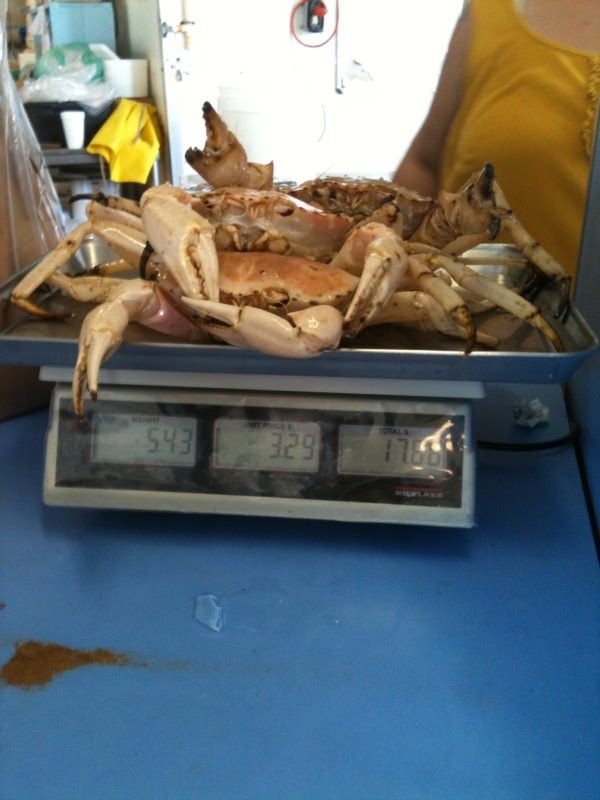 Weighing crab at Captain Mike's fish market.