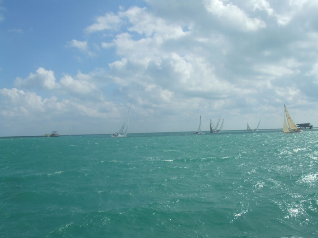 A pic from our regatta around Key Biscayne this past weekend- course included going through Stiltsville...