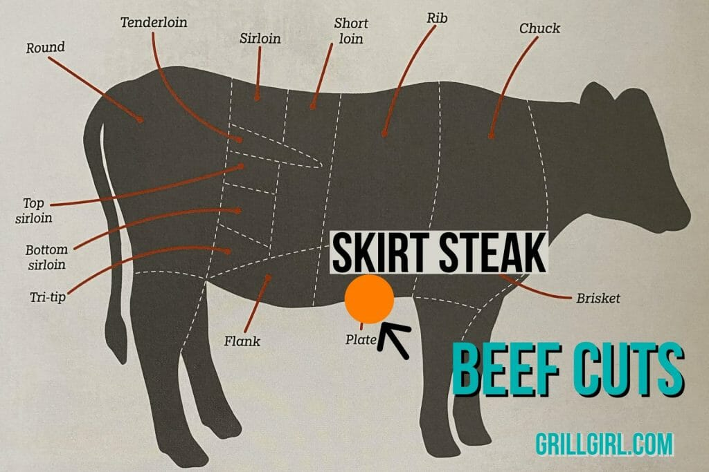 where does skirt steak come from on the cow