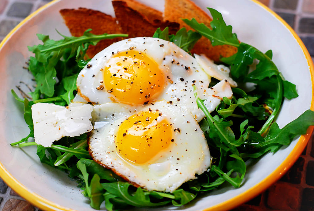Резултат со слика за eggs metabolism