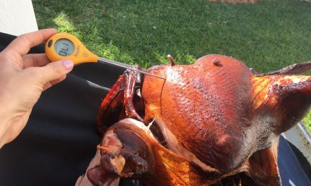 How to Cook Turkey on the Grill