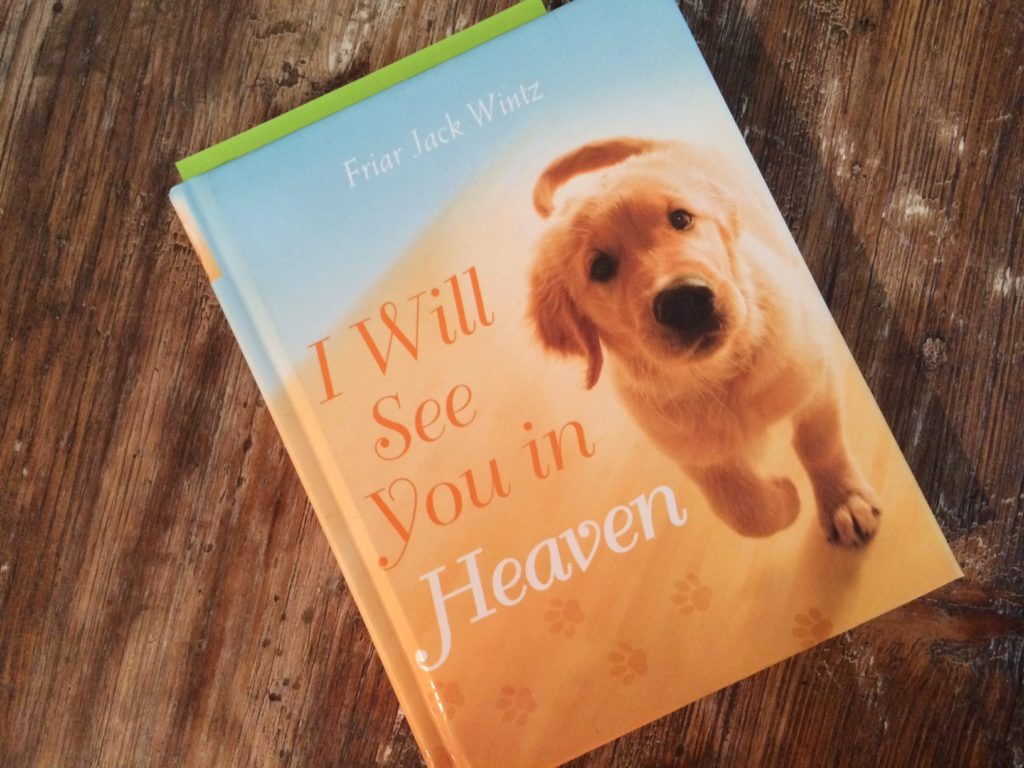 This book has been comforting as I grieve the sudden loss of my best pal, Connor.