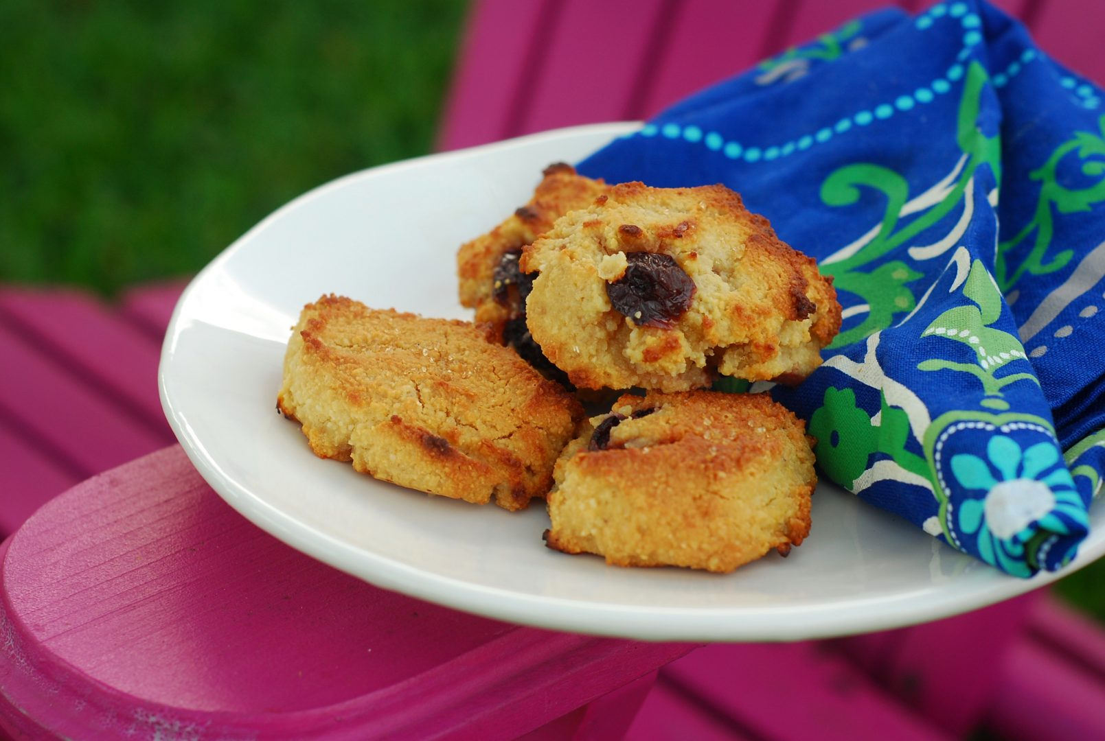 paleo scone recipe_gluten free scone recipe