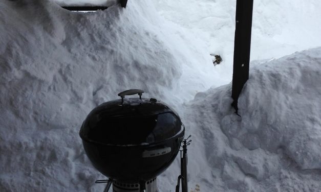 """""""Colder than a Well Digger's A**"""" Grilling Giveaway: Includes a Thermapen, Kobe Ribeye Steaks, and More!"""