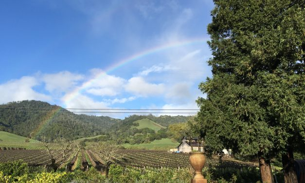 Must See Wineries Of Sonoma, PLUS, a Primer on Wine Types By Region