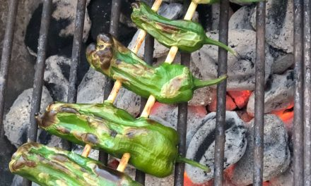 Grilled Shishito Peppers with Fleur De Sel
