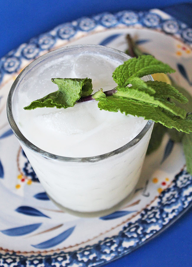 Coconut Mojito | Recipe + Photo by Michelle Lara
