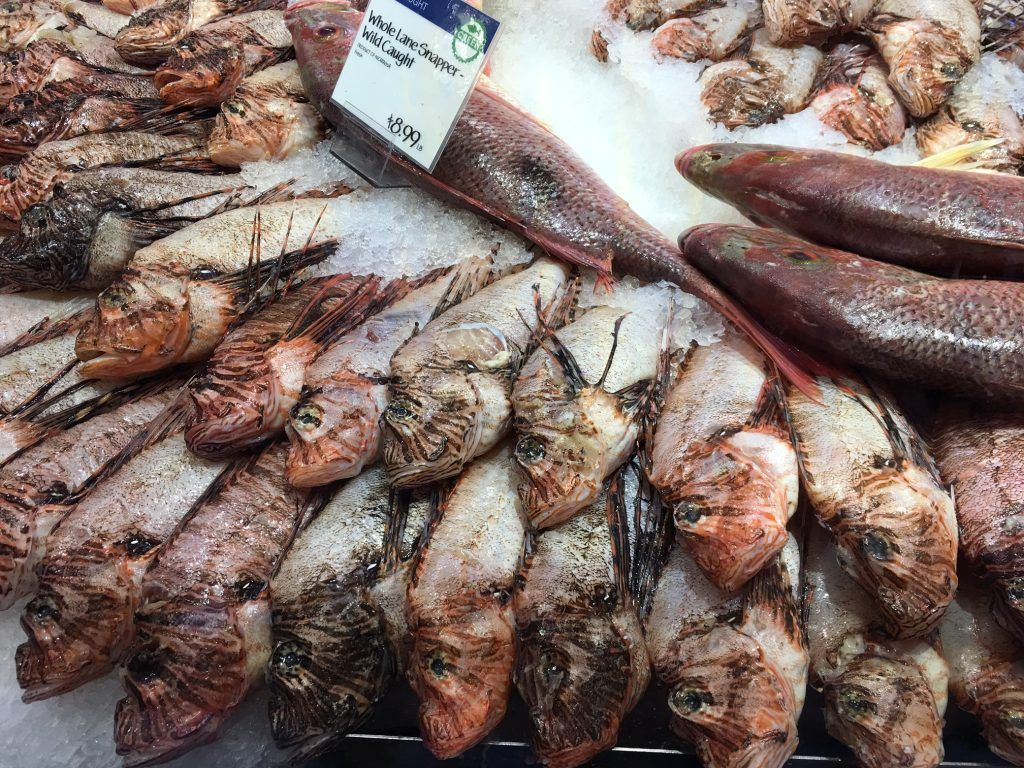 lionfish available at wholefoods