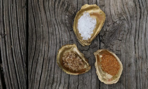 DIY Oyster Shell Salt Cellars
