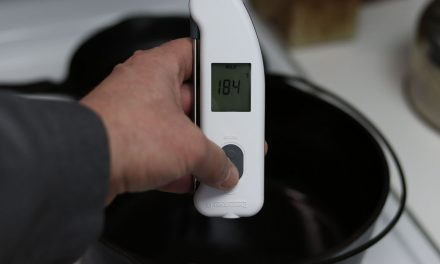 The Thermapen IR Review